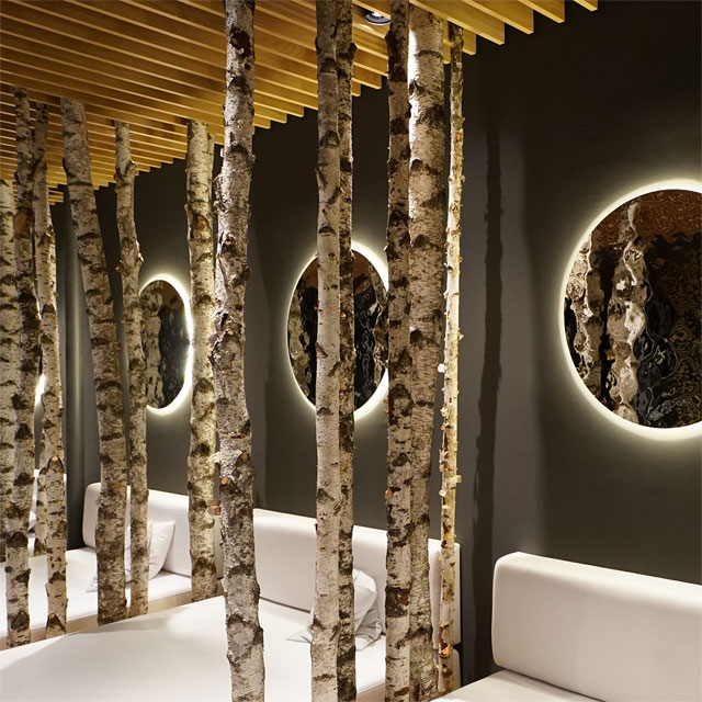 Germany, Tegernsee, Das Tegernsee Hotel, Relaxation Room, Wall Cladding EXYD-M, Photo EXYD